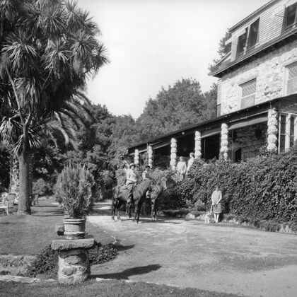 Stags' Leap Historic Photo: Horses Outside Manor House