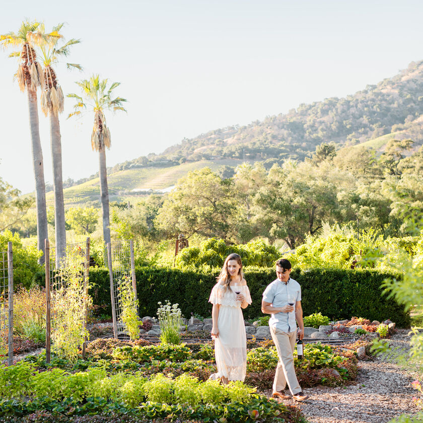 Guests Touring Grounds of Stags' Leap in Napa Valley