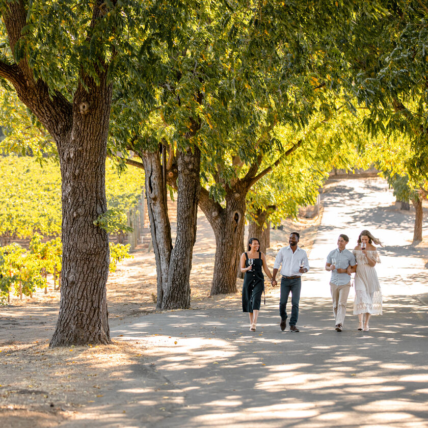 Guests Walking Next to Stags' Leap Vineyard