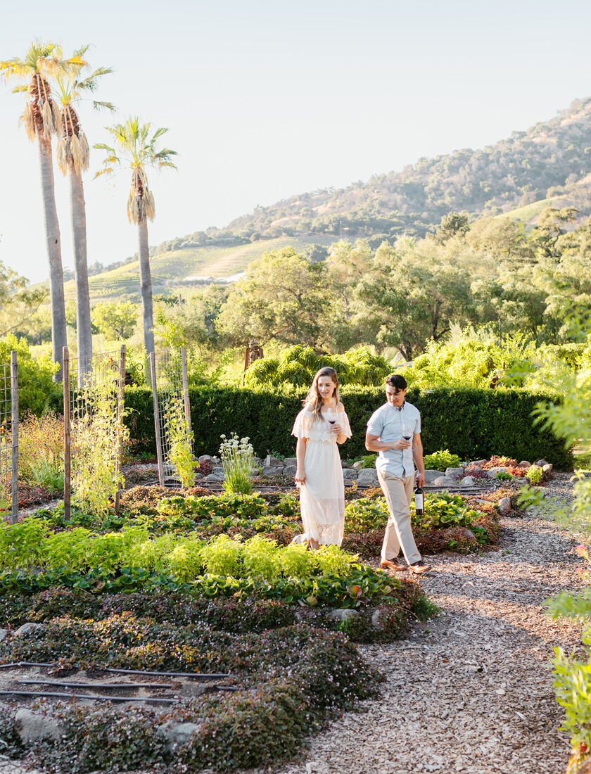 Winery Garden at Stags' Leap off Silverado Trail