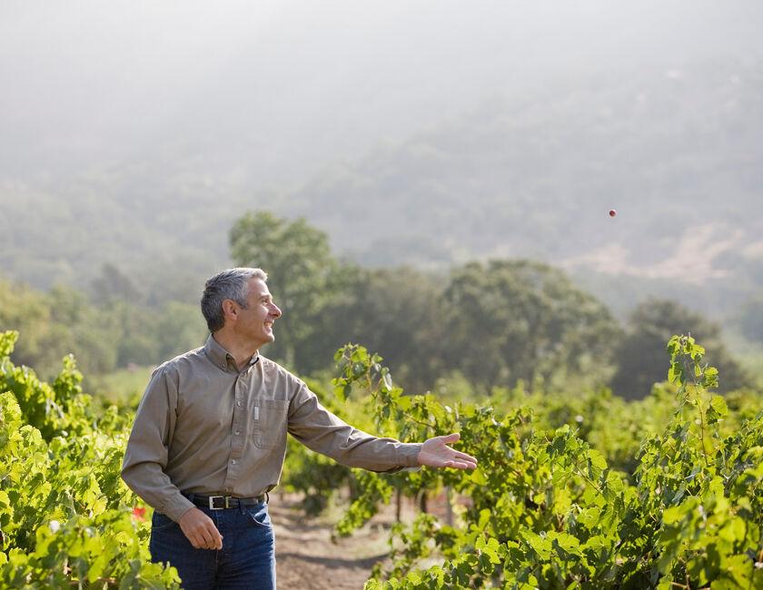 Christophe Paubert assessing the Vineyard