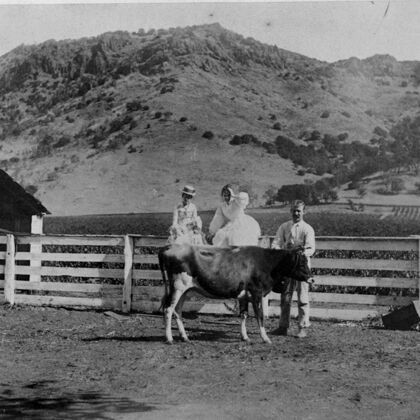 Stags' Leap Historic Photo: Family with Livestock on the Property
